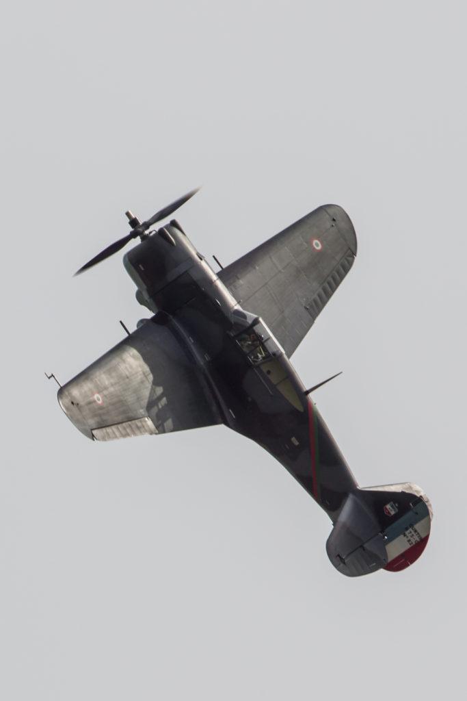 HM1D1565